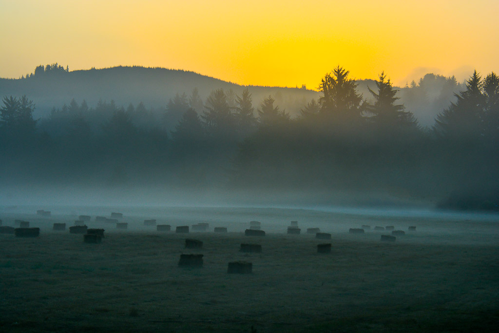 Sunrise over hay bales
